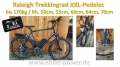 Bild 1 von Raleigh 170kg XXL - Pedelec Trekkingrad,  E-Bike mit kraftvollem Speedmotor mit Gasgriff  / (Option I) 50cm / Sinuscontroller / Farbdisplay / (Option II) 48V/17,5Ah Dolphin III  (840Wh) + 3A Ladegerät