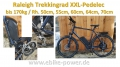 Bild 2 von Raleigh 170kg XXL - Pedelec Trekkingrad,  E-Bike mit kraftvollem Speedmotor mit Gasgriff  / (Option I) 60cm / Sinuscontroller / Farbdisplay / (Option II) 60V/14Ah Dolphin III  (840Wh) 20% mehr Power /  + 3A Ladegerät